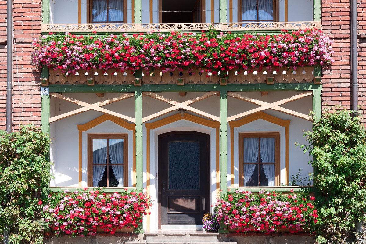 Doniczki Balkonowe Przywitaj Wiosnę Na Swoim Balkonie