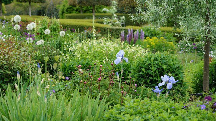 Jak zaaranżować ogród w stylu eko?